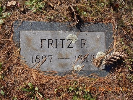 CARLSON, FRITZ REED - Marquette County, Michigan | FRITZ REED CARLSON - Michigan Gravestone Photos
