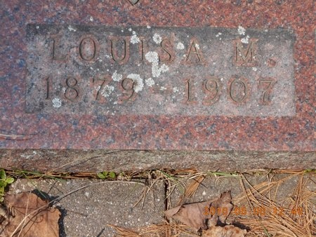 CARLSON, LOUISA M. - Marquette County, Michigan | LOUISA M. CARLSON - Michigan Gravestone Photos