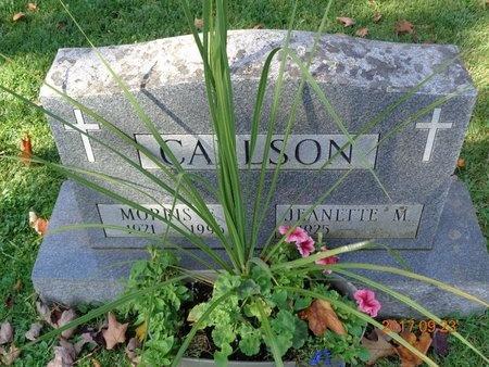 CARLSON, JEANETTE M. - Marquette County, Michigan | JEANETTE M. CARLSON - Michigan Gravestone Photos
