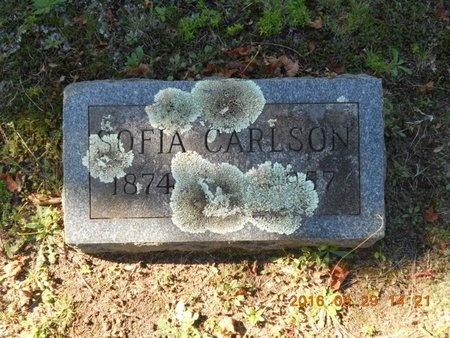 CARLSON, SOFIA - Marquette County, Michigan | SOFIA CARLSON - Michigan Gravestone Photos