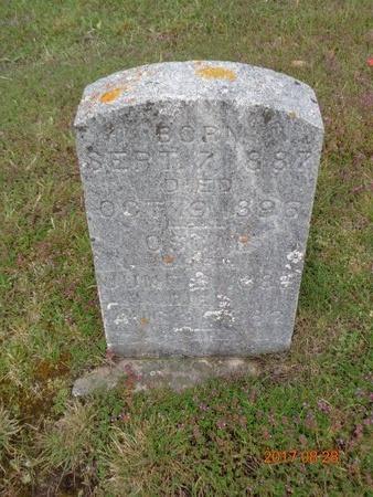 CARLSON, TILLIE - Marquette County, Michigan   TILLIE CARLSON - Michigan Gravestone Photos