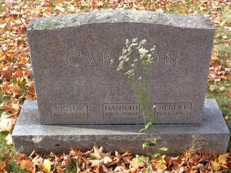 CARLSON, HANNAH - Marquette County, Michigan   HANNAH CARLSON - Michigan Gravestone Photos