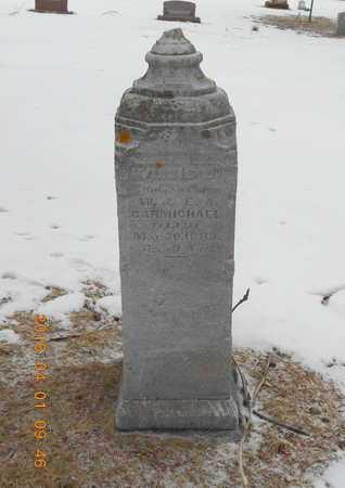 CARMICHAEL, FAMILY - Marquette County, Michigan   FAMILY CARMICHAEL - Michigan Gravestone Photos