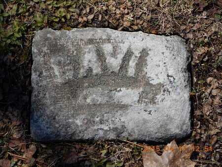 CAVIS, FAMILY - Marquette County, Michigan | FAMILY CAVIS - Michigan Gravestone Photos