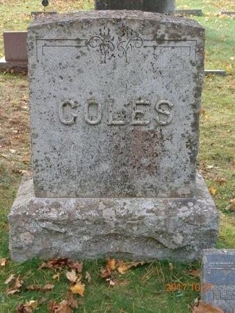 COLES, FAMILY - Marquette County, Michigan | FAMILY COLES - Michigan Gravestone Photos
