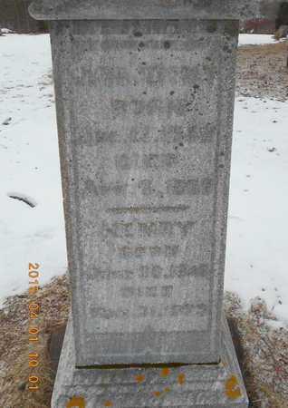 COLES, HENRY - Marquette County, Michigan | HENRY COLES - Michigan Gravestone Photos