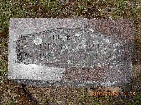 COLES, JOSEPH J. - Marquette County, Michigan | JOSEPH J. COLES - Michigan Gravestone Photos