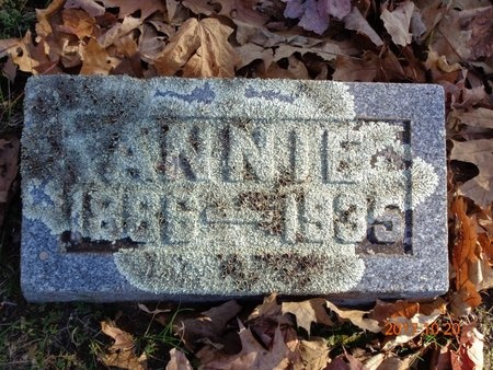 DALLY, ANNIE - Marquette County, Michigan | ANNIE DALLY - Michigan Gravestone Photos