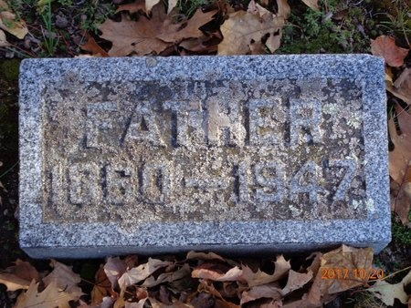 DALLY, JOSEPH H. - Marquette County, Michigan | JOSEPH H. DALLY - Michigan Gravestone Photos