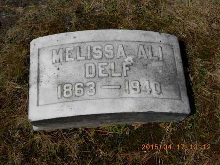 DELF, MELISSA ALI - Marquette County, Michigan   MELISSA ALI DELF - Michigan Gravestone Photos