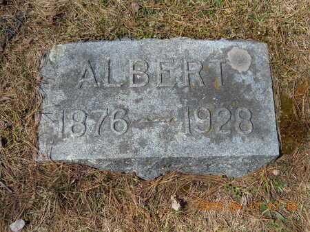 ECKSTROM, ALBERT - Marquette County, Michigan | ALBERT ECKSTROM - Michigan Gravestone Photos