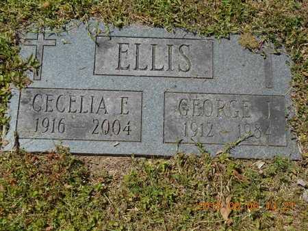 ELLIS, CECELIA E. - Marquette County, Michigan | CECELIA E. ELLIS - Michigan Gravestone Photos