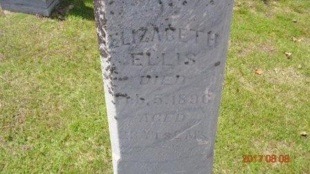 ELLIS, ELIZABETH - Marquette County, Michigan | ELIZABETH ELLIS - Michigan Gravestone Photos