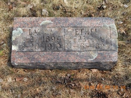 ELLIS, ETHEL - Marquette County, Michigan | ETHEL ELLIS - Michigan Gravestone Photos