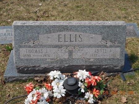 ELLIS, ANNIE M. - Marquette County, Michigan   ANNIE M. ELLIS - Michigan Gravestone Photos