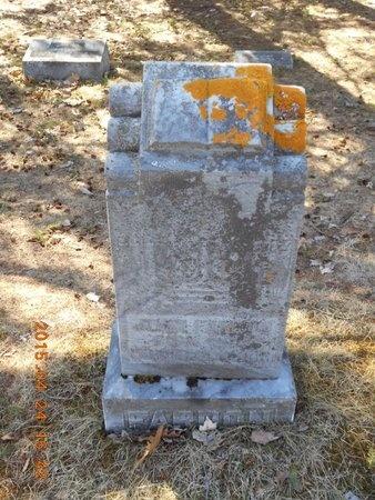 FARDON, JOHN - Marquette County, Michigan | JOHN FARDON - Michigan Gravestone Photos