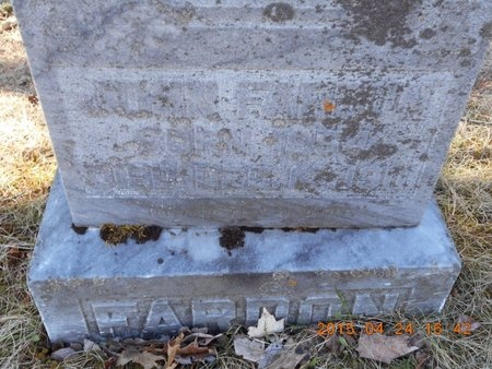 FARDON, JOHN - Marquette County, Michigan   JOHN FARDON - Michigan Gravestone Photos