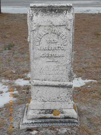 FERGUSON, WILLIAM - Marquette County, Michigan | WILLIAM FERGUSON - Michigan Gravestone Photos
