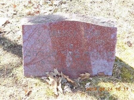 FINE, FLORENCE - Marquette County, Michigan   FLORENCE FINE - Michigan Gravestone Photos