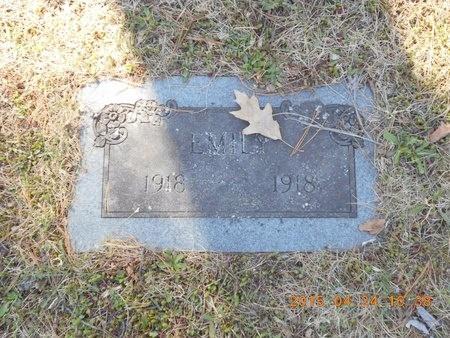 FLINK, EMILY - Marquette County, Michigan | EMILY FLINK - Michigan Gravestone Photos