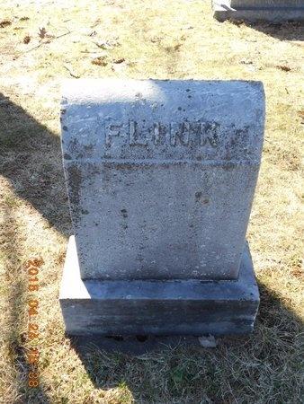 FLINK, FAMILY - Marquette County, Michigan   FAMILY FLINK - Michigan Gravestone Photos