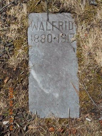 FLINK, WALFRID - Marquette County, Michigan | WALFRID FLINK - Michigan Gravestone Photos