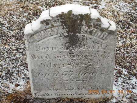 FRANKLIN, MARY - Marquette County, Michigan | MARY FRANKLIN - Michigan Gravestone Photos