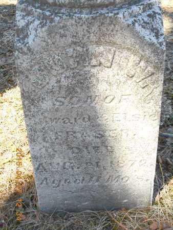 FRASER, JOHN W. - Marquette County, Michigan   JOHN W. FRASER - Michigan Gravestone Photos