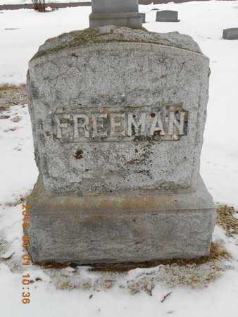 FREEMAN, FAMILY - Marquette County, Michigan | FAMILY FREEMAN - Michigan Gravestone Photos