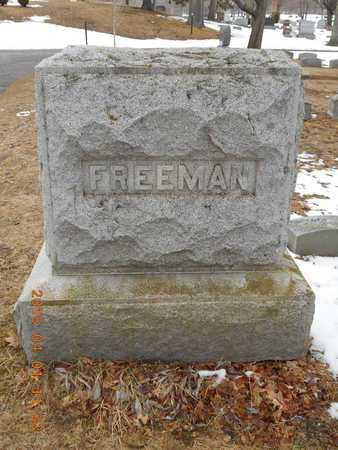 FREEMAN, FAMILY - Marquette County, Michigan   FAMILY FREEMAN - Michigan Gravestone Photos