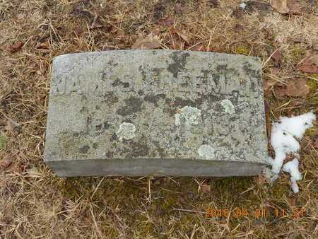 FREEMAN, JAMES - Marquette County, Michigan | JAMES FREEMAN - Michigan Gravestone Photos