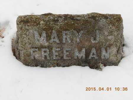 TOBIN FREEMAN, MARY JANE - Marquette County, Michigan   MARY JANE TOBIN FREEMAN - Michigan Gravestone Photos