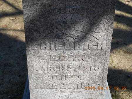 FRIEDRICH, IGNATZ - Marquette County, Michigan   IGNATZ FRIEDRICH - Michigan Gravestone Photos