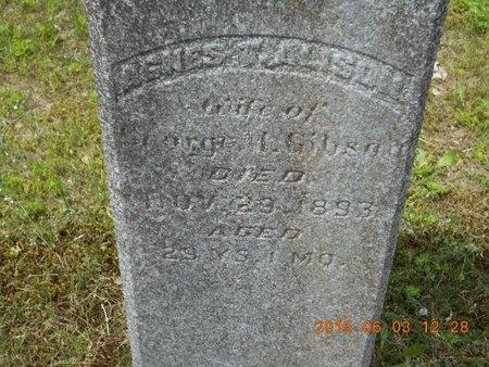 ALISON GIBSON, AGNES - Marquette County, Michigan | AGNES ALISON GIBSON - Michigan Gravestone Photos
