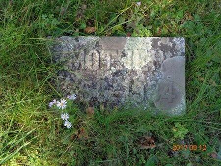 GILL, MARY - Marquette County, Michigan | MARY GILL - Michigan Gravestone Photos