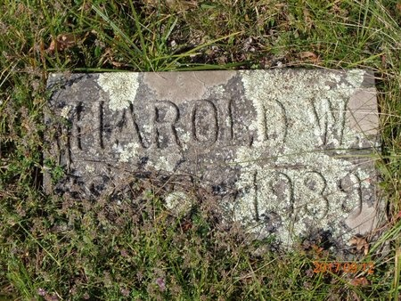 GILL, HAROLD W. - Marquette County, Michigan | HAROLD W. GILL - Michigan Gravestone Photos