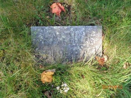 GILL, JOSEPH HENRY - Marquette County, Michigan | JOSEPH HENRY GILL - Michigan Gravestone Photos