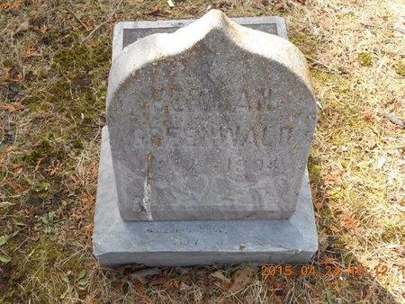 GREENWALD, HERMAN - Marquette County, Michigan | HERMAN GREENWALD - Michigan Gravestone Photos