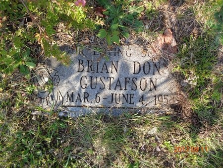 GUSTAFSON, BRIAN DON - Marquette County, Michigan | BRIAN DON GUSTAFSON - Michigan Gravestone Photos