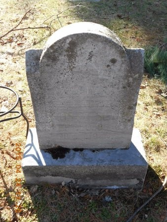 GUSTAFSON, CLARA - Marquette County, Michigan | CLARA GUSTAFSON - Michigan Gravestone Photos