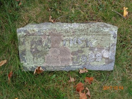 GUSTAFSON, LINDA - Marquette County, Michigan | LINDA GUSTAFSON - Michigan Gravestone Photos