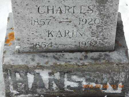 HANSEN, CHARLES - Marquette County, Michigan | CHARLES HANSEN - Michigan Gravestone Photos