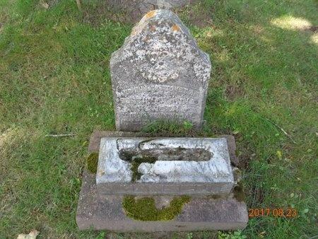 HANSEN, DORTHEA ANN - Marquette County, Michigan | DORTHEA ANN HANSEN - Michigan Gravestone Photos