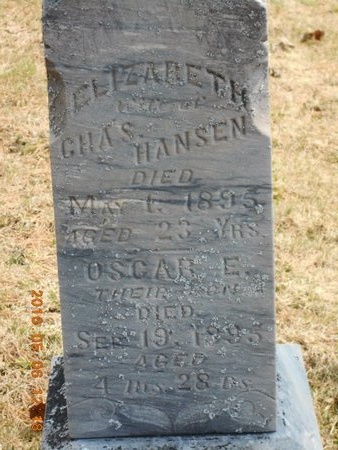 HANSEN, ELIZABETH - Marquette County, Michigan | ELIZABETH HANSEN - Michigan Gravestone Photos