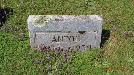 HANSON, ANTON - Marquette County, Michigan | ANTON HANSON - Michigan Gravestone Photos