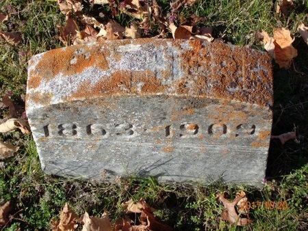 HANSON, JOHN - Marquette County, Michigan | JOHN HANSON - Michigan Gravestone Photos