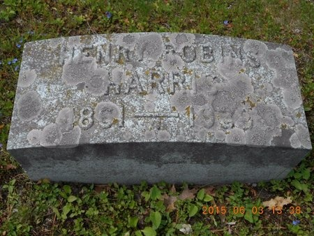 HARRIS, HENRY ROBINS - Marquette County, Michigan | HENRY ROBINS HARRIS - Michigan Gravestone Photos