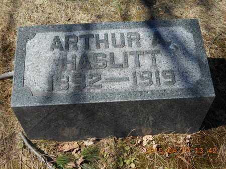 HASLITT, ARTHUR A. - Marquette County, Michigan | ARTHUR A. HASLITT - Michigan Gravestone Photos