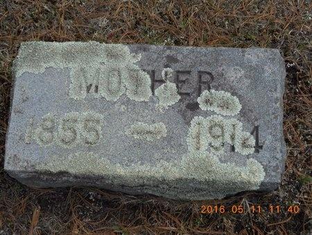 HELMSDORFER, DELMA - Marquette County, Michigan | DELMA HELMSDORFER - Michigan Gravestone Photos