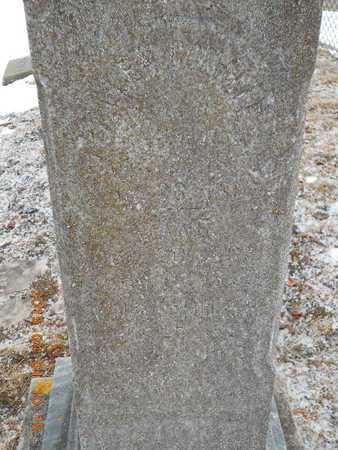 HOAR, WILLIAM C.P. - Marquette County, Michigan | WILLIAM C.P. HOAR - Michigan Gravestone Photos